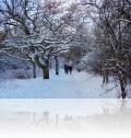 warnemuende-winter-19