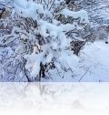 warnemuende-winter-7