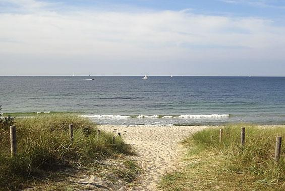 Strand Hohe Düne/Markgrafenheide