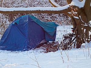 Wintercamper im Küstenwald